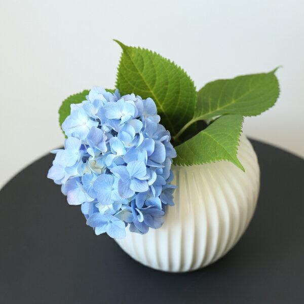 Kahler (ケーラー) ハンマースホイ フラワーベース Sサイズ ホワイト 花瓶 陶器 日本正規代理店品
