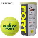 『全品10%OFFクーポン対象』DUNLOP(ダンロップ)「FORT(フォート)[2個入]1箱(30缶/60球)」テニスボール