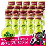 【最大21倍】【『即日出荷』 「エントリー+レビューで選べるプレゼント」「新パッケージ」DUNLOP(ダンロップ)「St.JAMES(セントジェームス)(15缶/60球)」テニスボール「あす楽対応」