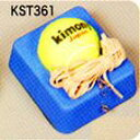 Kst361