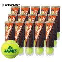 DUNLOP(ダンロップ)「St.JAMES(セントジェームス)(15缶/60球)」テニスボール