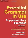 EssentialGrammarinUseSupplementaryExercises:AuthenticExaminationPapersfromCambridgeEnglishLanguageAssessment(英語)
