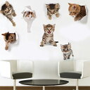 トリックアート ウォールステッカー ネコ 猫 穴から飛び出る 全7種類...