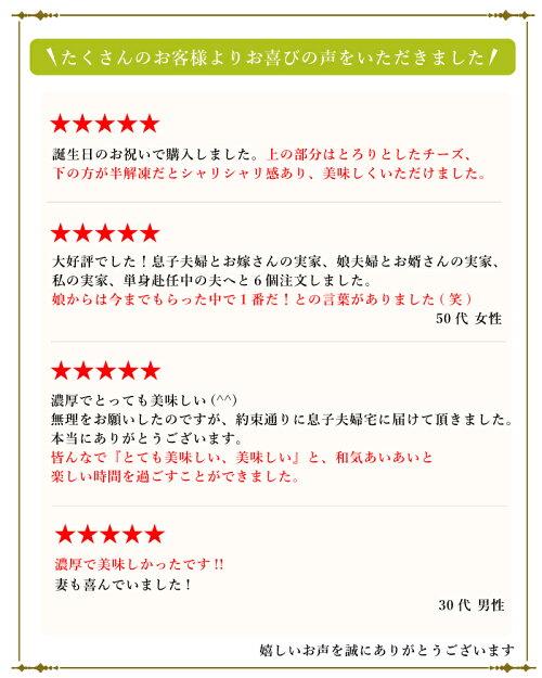父の日スイーツ【送料込】神戸バニラフロマージュ4号(約12cm2〜4名様)お取り寄せスイーツお中元ギフトお菓子贈り物ギフトご挨拶誕生日出産祝い内祝い冷凍ケーキ チーズケーキ洋菓子