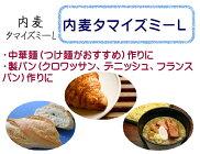 内麦タマイズミ-L準強力粉3kg(1kg×3袋)/中華麺用粉製パン用粉ホームベーカリー3キロ