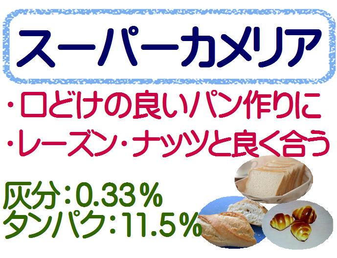 スーパーカメリヤ 強力粉 10kg(1kg×10)1kg パン用粉 / パン用 小麦粉 菓子パン パン材料送料無料(2kgまで同梱可)
