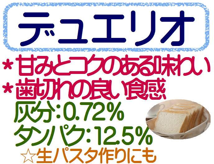 デュエリオ 10kg (1kg×10袋) 強力粉 デュラム粉 強力小麦粉 パン用小麦粉 生パスタ 1kg×10 / 送料無料 2kgまで同梱可 / デュラム小麦粉 100% 生パスタ 手打ちパスタ デュラム小麦 / パン材料 パン作り 小麦粉 ホームベーカリー
