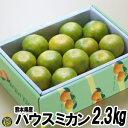 ハウスミカン 2.3kg【送料無料】熊本県 温室 みかん