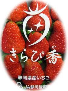 美味しさならまかせて【ご予約】静岡いちご『きらぴ香』