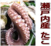 食い初め ひな祭り 瀬戸内海