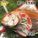 【送料無料!】【お食い初め 鯛】【祝い鯛】1.7kgアップお食い初め お祝い用【祝...