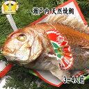 【お食い初め 鯛】焼鯛 送料無料 祝い飾り付き 当店1番人気