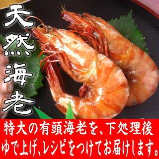 お食い初め料理・有頭えび