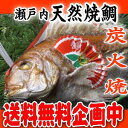 【焼鯛】送料無料実施中!!祝い飾付き!!明石・淡路島産1.5kgアップの新鮮な活〆真鯛を炭火で丁寧...