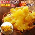 安納芋の焼き芋(さつまいも やきいも)【送料無料】簡単調理ですぐ食べれる!冷凍焼き芋♪種子島産プレミア蜜芋使用【完熟安納芋焼き芋1kg】