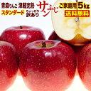 りんご 5kg 送料無料 青森産 津軽 完熟 サンふじ ご家庭用 フルーツ 果物