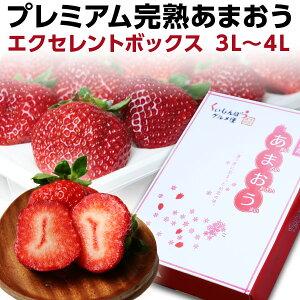 ギフト ex ポイント10倍 福岡産 プレミアム 大粒完熟 9〜12粒 いちご 苺 イチゴ 農家直送 産地直送