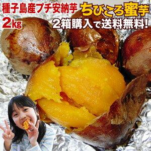 \予約開始/ 大人気プチ安納芋(さつまいも)♪訳ありびっくり価格!Aランクのお芋をたっぷり2k…
