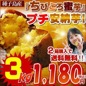 【甘さピカいち!】極上のあま〜い蜜がたっぷり甘熟プチ蜜芋♪糖度40度の種子島産安納芋★プレ...