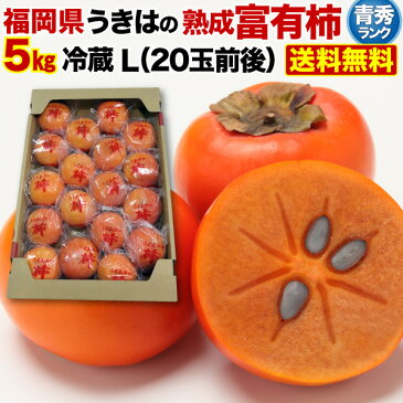 柿 かき 熟成富有柿 5kg Lサイズ 20玉前後 青秀 送料無料 福岡県産 冷蔵熟成 ギフト 内祝 贈り物