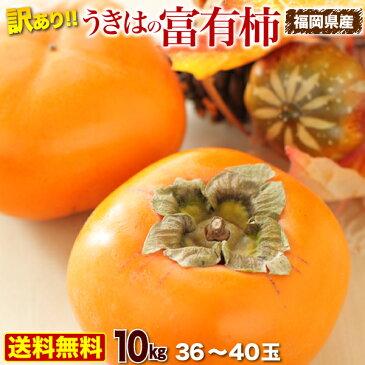 柿 訳あり 10kg 送料無料 福岡県産 うきはの富有柿 ご家庭用