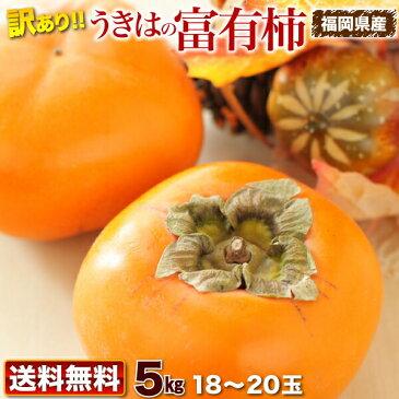 柿 訳あり 送料無料 5kg 福岡県産 うきはの富有柿 ご家庭用