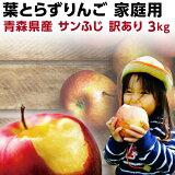 りんご 青森 葉とらず サンふじ ご家庭用 約3kg(8〜14玉) ちょっぴり 訳あり 送料無料 産直 世界が認めたリンゴ