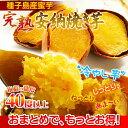甘くて美味しい種子島産安納蜜芋♪★美味しい&簡単さつまいもダイエット!美容と健康に大活躍...