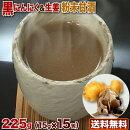 甘酒黒にんにくと生姜入り粉末甘酒225g(15gx15袋)国産原料酒粕小包装タイプ