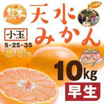 熊本 みかん 小玉 秀品 S~3S 早生 天水蜜柑 10kg 送料無料 約50個前後