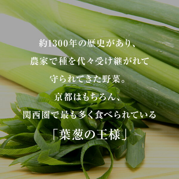 産直 京都府産 九条ねぎ カット 3mm ( 1kg )