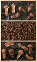 大阪 土産 佃煮 塩昆布 松茸昆布 牛肉佃煮の詰め合わせMG?30【楽ギフ_のし宛書】 大阪土産 ギフト 贈答品 好適品 大阪 お土産 お中元 御中元 帰省 土産