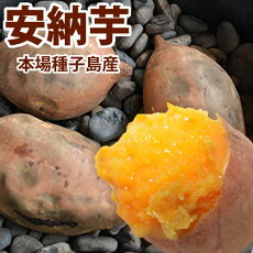 安納芋種子島送料無料2.0kg2セット購入で1kg増量生芋さつまいもサツマイモ