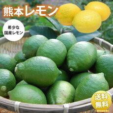 レモン送料無料訳あり2kg熊本県産