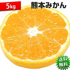 みかん5kg送料無料訳あり熊本県産蜜柑ミカン柑橘フルーツ