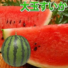 すいか送料無料大玉スイカ熊本県産ご自宅用訳あり西瓜1玉約4.5kg~5kg