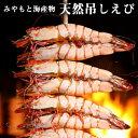 みやもと海産物 天然吊しえび アシアカエビ 10尾入り 熊本県芦北産