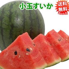 すいか熊本スイカ熊本県産1玉4~5kg送料無料くまもと西瓜
