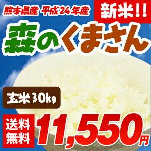 粘りが強くモチモチとした食感が人気のお米です。冷めても美味しいと評判の熊本が誇るブランド...