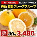 本場・熊本県産 秀品 和製グレープフルーツ 10kg 河内晩...