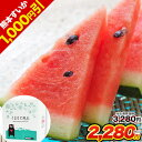 【今だけ1000円OFF+クーポンで111円OFF】【送料無...