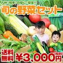 日本全国でも指折りの「野菜の名産地」熊本県の安心・安全な新鮮お野菜を中心に12種類、あなた...