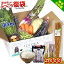 【被災直売所 復興応援】熊本 県産 旬の 野菜 セット 熊本...