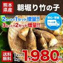 【送料無料】【安心のクール便】熊本県産 朝掘りたけのこ1kg...