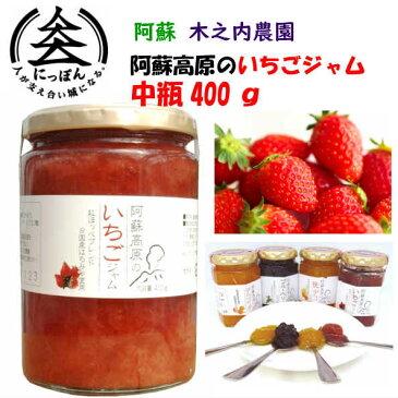 九州熊本の逸品 阿蘇木之内農園 阿蘇高原いちごジャム400g 阿蘇産紅ほっぺ ※人気商品の為発送まで1週間以上かかる可能性がございます。イチゴジャム・国産はちみつ使用・ハチミツ・蜂蜜・はちみつ・果実ぎっしり・熊本・お土産・ご当地・阿蘇