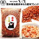 熊本菊池産赤米もち麦Wブレンド500g ポリフェノール抜群の...