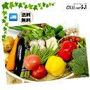 野菜のプロが厳選した新鮮お野菜セット8品以上 送料無料送料込...