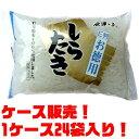 【送料無料!】紙屋商店 E判しらたき 300g ×24入り昔...