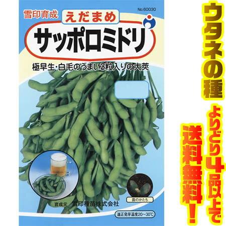 【メール便】ウタネ サッポロミドリ枝豆 600303粒入りの多い人気の枝豆