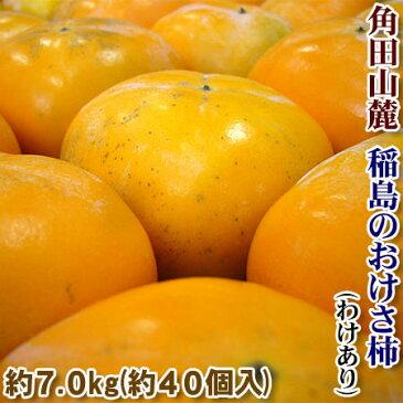 【送料無料!】【アウトレット】大橋さんのおけさ柿(わけあり)二段(約7.5kg)あまりのおいしさに一度食べたら、みんなびっくり毎年待ち遠しくなる美味しさ!